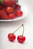 Two ripe juicy cherries Royalty Free Stock Image