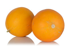 Two ripe juicy fragrant melon Stock Photography