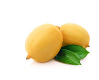 Two ripe lemons with leafs Stock Image