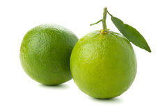 Two ripe limes with leaf Royalty Free Stock Images