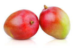 Two ripe mango fruits Stock Images