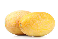 Two ripe melons Royalty Free Stock Photos