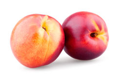 Two ripe nectarines Stock Photo