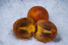 Two ripe orange persimmons Royalty Free Stock Photos