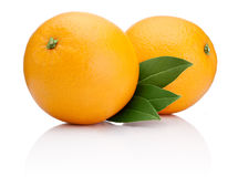 Two Ripe Oranges fruit with green leaves isolated Stock Photography