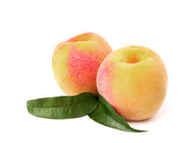 Two ripe peach with leaves Stock Images