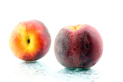 Two ripe peaches in the water droplets on white background Stock Photos