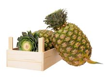 Two ripe pineapples Royalty Free Stock Photos