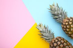 Two ripe pineapples on a colorful background stock image