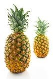 Two ripe pineapples, focus on the closest one. Two ripe pineapples on white background, focus on the closest one royalty free stock photos