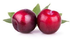 Two ripe plums with leaves Stock Images