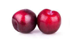 Two ripe plums Stock Photography