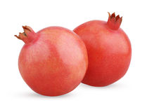 Two ripe pomegranate fruits Stock Image