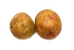 Two ripe potatoes. On white background. Isolation Stock Photos