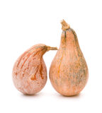 Two ripe pumpkins Royalty Free Stock Photography
