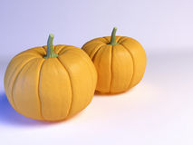 Two ripe pumpkins on white Stock Photography