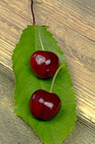 Two ripe red cherries on a green leaf Royalty Free Stock Image