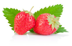 Two ripe red strawberries and a leaf isolated on white Stock Photography