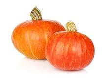 Free Two Ripe Small Pumpkins Stock Photos - 42248353