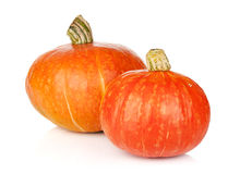 Two ripe small pumpkins stock photos
