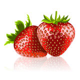 Two ripe strawberries Royalty Free Stock Photography