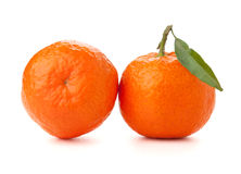 Two ripe tangerines Royalty Free Stock Image