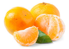 Two ripe tangerines isolated on white background Royalty Free Stock Photography