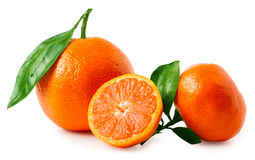 Two ripe tangerines isolated on white background Stock Image