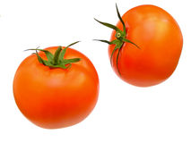 Two ripe tomatoes Stock Photo