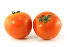 Two ripe tomatoes. Isolated on white background Royalty Free Stock Photo