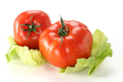 Two ripe tomatoes on lettuce leafs Royalty Free Stock Image