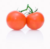 Two ripe tomatoes with reflection Stock Photos
