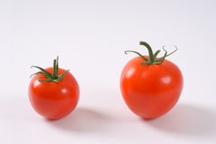 Two ripe tomatoes Stock Photography