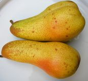 Two Ripe Yellow Pears stock images