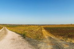 Two roads in the countryside royalty free stock photos
