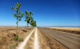 Two Roads, One Destination. Two parallel roads in the Spanish meseta, along the Camino de Santiago Royalty Free Stock Photography