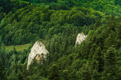 Two rocks. Two rock in mountain forest. Pieniny. Poland Europe Royalty Free Stock Image