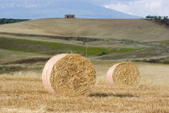 Two Roll of hay royalty free stock photography