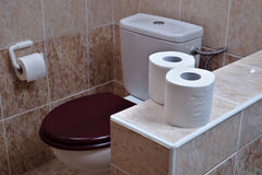 Two rolls of white toilet paper in the background toilet bowl Stock Photography