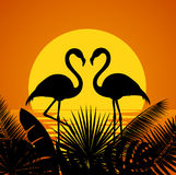 Two romantic flamingos silhouettes with tropical leaves background Stock Photography