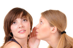 Two romantic gossips royalty free stock photography