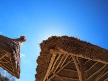 Two roof of reeds. With bottom view stock image