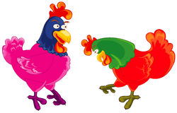 Two rooster Royalty Free Stock Images