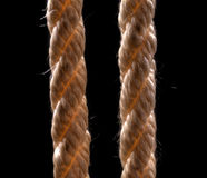 Two ropes on a black background Stock Image