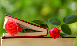 Two Roses. Two red Roses on books Stock Photography