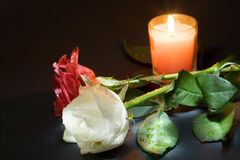 Two roses and candle. Two roses and the candle, nights luminous in darkness Stock Photo