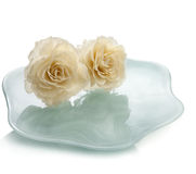 Two roses on plate Royalty Free Stock Photography