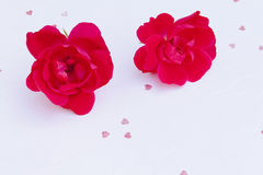 Two roses on  textured paper Stock Photography