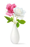 Two roses in a vase. Isolated flowers. Pink and white roses in a vase on white background stock images