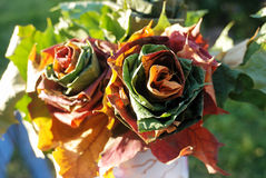 Two roses woven of fall leaves Stock Image